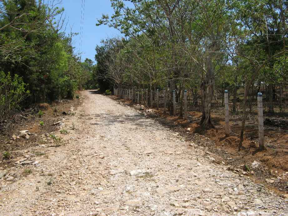 Lot for sale San Ramon Central Valley Costa Rica
