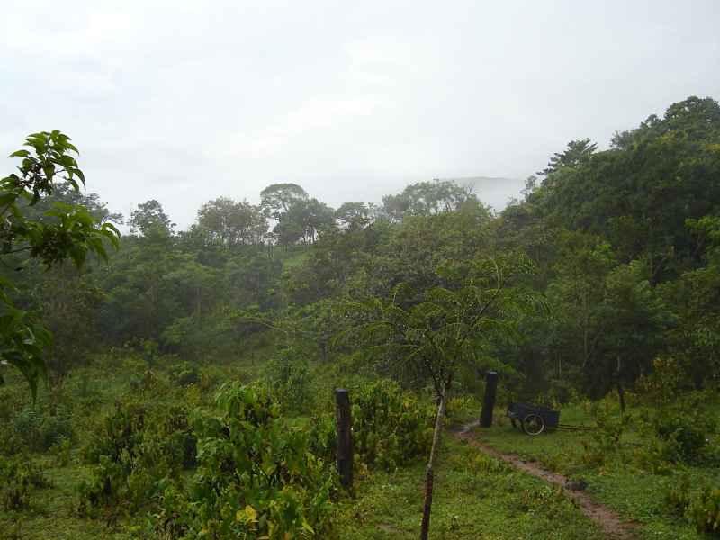 Costa Rica property available at Rancho Silencio near San Ramon