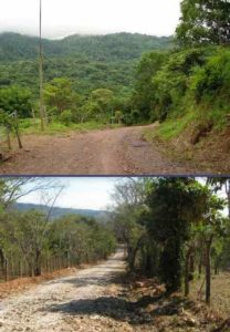 Road to Rancho Silencio