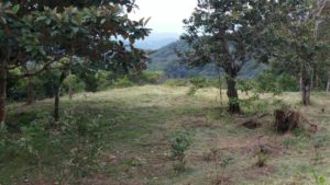Lot 4 from the back looking towards Gulf at Rancho Silencio San Ramon Costa Rica