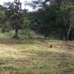 Lot 4 looking eastat Rancho Silencio San Ramon Costa Rica properties for sale