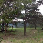 Panoramic of Lot 4 at Rancho Silencio Costa Rica near San Ramon
