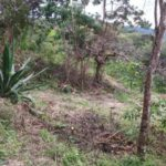 Buildable area on Lot 5 below Lot 4 Rancho Silencio Costa Rica