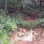 Little waterfall in the rainy season at Lot 2 Rancho Silencio Costa Rica